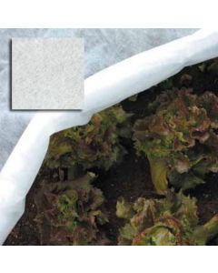 Papillon telo tessuto non tessuto per agricoltura protegge da freddo vento insetti volatili